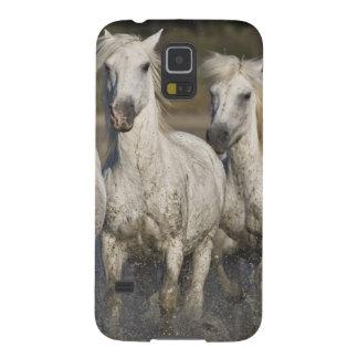 France, Camargue. Horses run through the 2 Case For Galaxy S5