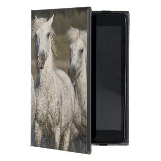 France, Camargue. Horses run through the 2 iPad Mini Case