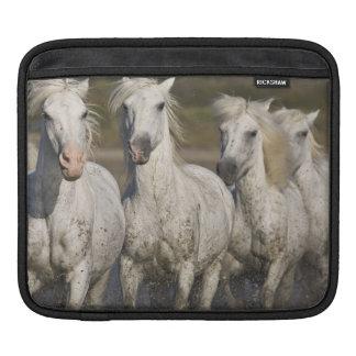 France, Camargue. Horses run through the 2 iPad Sleeve