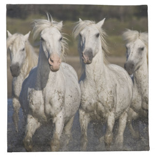 France, Camargue. Horses run through the 2 Napkin