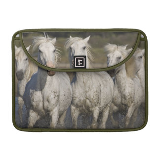 France, Camargue. Horses run through the 2 Sleeves For MacBook Pro