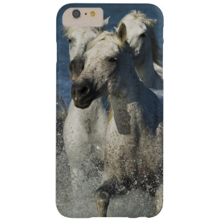 France, Camargue. Horses run through the estuary 4 Barely There iPhone 6 Plus Case