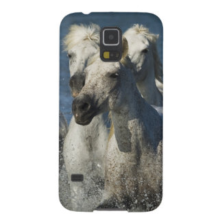 France, Camargue. Horses run through the estuary 4 Galaxy S5 Cases