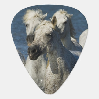 France, Camargue. Horses run through the estuary 4 Guitar Pick