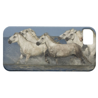 France, Camargue. Horses run through the estuary Barely There iPhone 5 Case