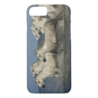 France, Camargue. Horses run through the estuary iPhone 7 Case