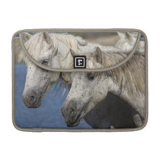 France, Camargue. Horses run through the Sleeves For MacBooks