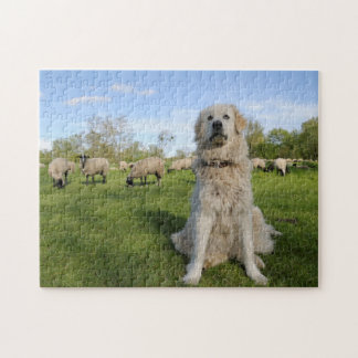 France, Centre, Chatillon-sur-Loire. Dog Jigsaw Puzzle