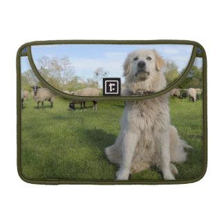 France, Centre, Chatillon-sur-Loire. Dog MacBook Pro Sleeves