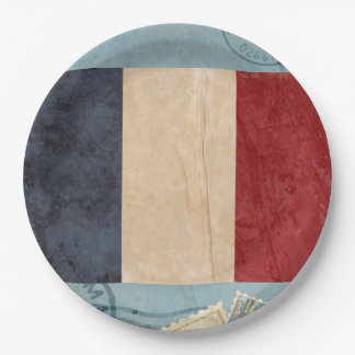 France Flag Paper Plates