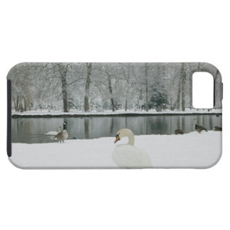 FRANCE, French Alps (Isere), VIZILLE: Chateau de iPhone 5 Covers