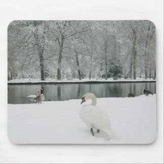FRANCE, French Alps (Isere), VIZILLE: Chateau de Mouse Pad
