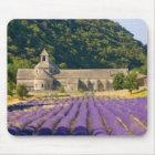 France, Gordes. Cistercian monastery of Mouse Mat