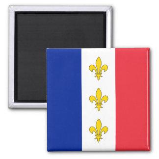 France Magnet - Tricolour & Fleurs-de-Lys
