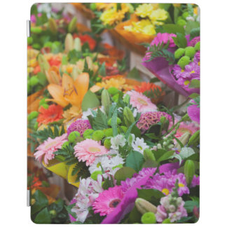 France, Nord, French Flanders, Lille, Wazemmes iPad Cover