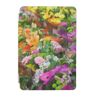 France, Nord, French Flanders, Lille, Wazemmes iPad Mini Cover