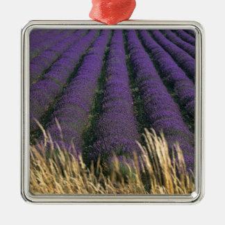 France, PACA, Alpes de Haute Provence, 2 Silver-Colored Square Decoration