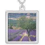 France, PACA, Alpes de Haute Provence, 3 Silver Plated Necklace