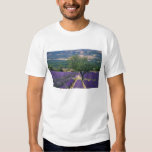France, PACA, Alpes de Haute Provence, 3 Tee Shirts