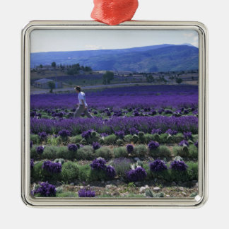 France, PACA, Alpes de Haute Provence, Manual Silver-Colored Square Decoration