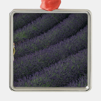 France, PACA, Alpes de Haute Provence, Woman Christmas Tree Ornaments