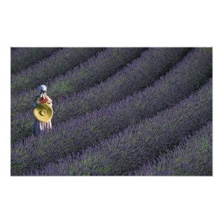 France, PACA, Alpes de Haute Provence, Woman Photo