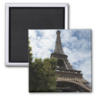 France, Paris, Eiffel Tower and tree, low angle Square Magnet