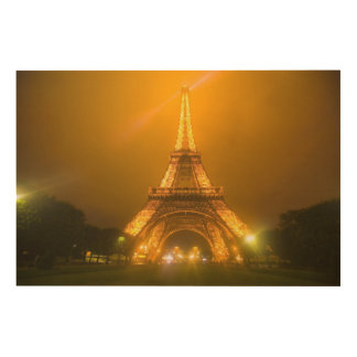 France, Paris. Eiffel Tower illuminated at 3 Wood Print