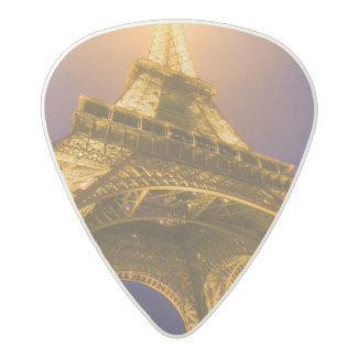 France, Paris. Looking up from base of Eiffel Acetal Guitar Pick