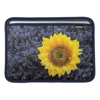 France, Provence-Alpes-Cote d'Azur MacBook Sleeves