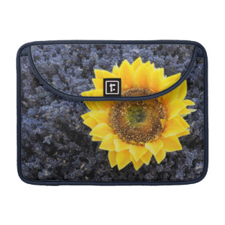 France, Provence-Alpes-Cote d'Azur Sleeve For MacBook Pro
