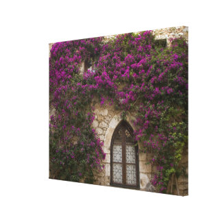 France, Provence, Eze. Bright pink Gallery Wrap Canvas