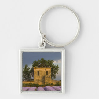 France, Provence. Field of lavender and Key Ring
