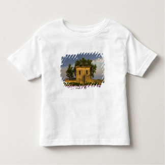 France, Provence. Field of lavender and Toddler T-Shirt