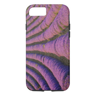 France, Provence Region. Orderly rows of iPhone 8/7 Case