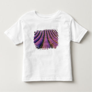France, Provence Region. Orderly rows of Toddler T-Shirt