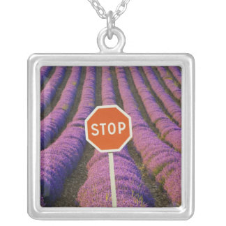 France, Provence. Rows of lavender and stop Square Pendant Necklace