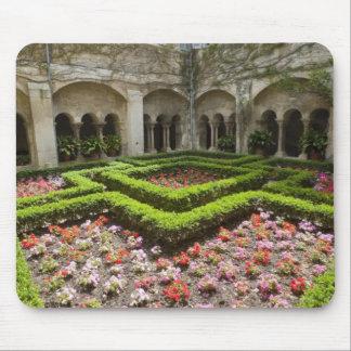 France, Provence, St. Remy-de-Provence. Garden Mouse Mat