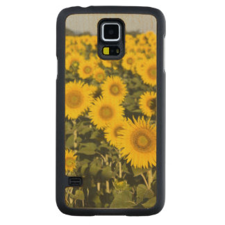 France, Provence, Valensole. Field of Carved Maple Galaxy S5 Case