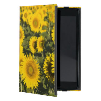 France, Provence, Valensole. Field of Case For iPad Mini