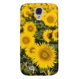 France, Provence, Valensole. Field of Galaxy S4 Case