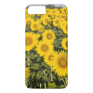 France, Provence, Valensole. Field of iPhone 8 Plus/7 Plus Case