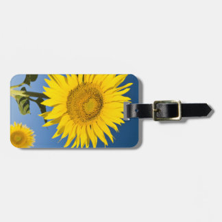 France, Provence, Valensole. Sunflowers stand Luggage Tag