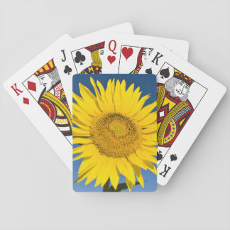 France, Provence, Valensole. Sunflowers stand Playing Cards