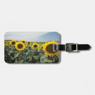 France Provence, View of sunflowers field Bag Tag
