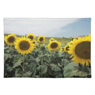 France Provence, View of sunflowers field Placemat