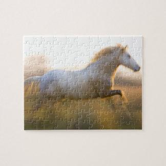 France, Provence. White Camargue horse running. Jigsaw Puzzle
