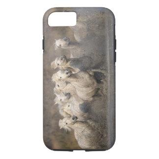 France, Provence. White Camargue horses running iPhone 8/7 Case