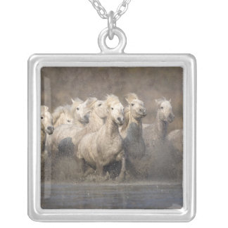 France, Provence. White Camargue horses running Silver Plated Necklace