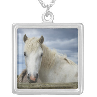 France Silver Plated Necklace